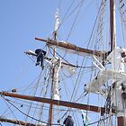 up in the rigging by gaylene