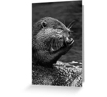 A Swim & A Bite to Eat Greeting Card