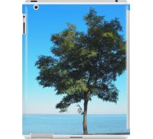 Lonely tree acacia on the shores of the sea iPad Case/Skin