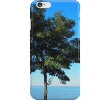 Lonely acacia tree with green leaves on the coast of the sea iPhone Case/Skin