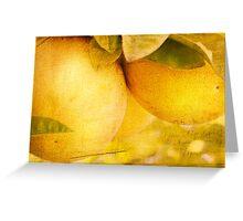 Citrus Tang Greeting Card