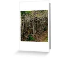 Entwined and Tangled Greeting Card