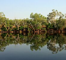 Katherine River - Northern Territory, Australia by Ruth Durose