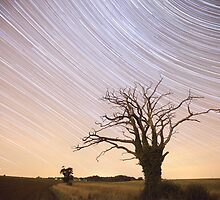 Dead Tree Startrails by Nick Atkin