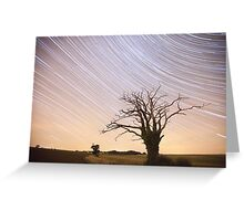Dead Tree Startrails Greeting Card