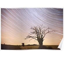 Dead Tree Startrails Poster