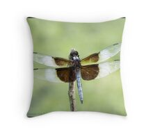 Widow Skimmer... Throw Pillow