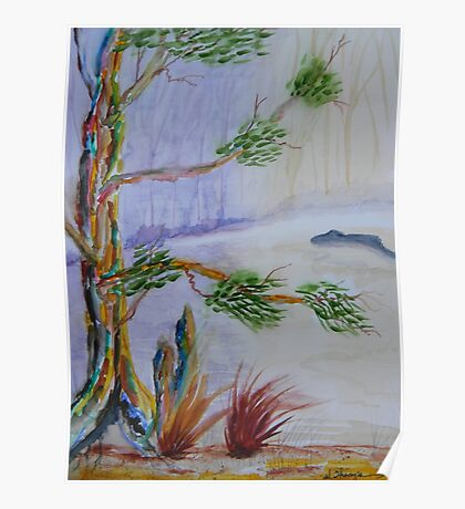 Old Cypress of Many Colors Poster