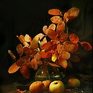 Autumn still life by VallaV