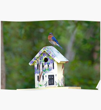 The Bird House Poster