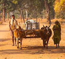Bandhavgarh Travellers by Clive S
