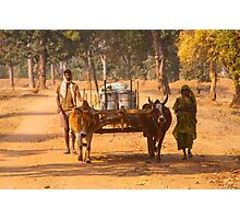 Bandhavgarh Travellers Photographic Print