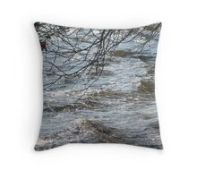 St. Johns River, Jacksonville, FL Throw Pillow