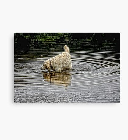 I just had to have a paddle ~ dog Canvas Print