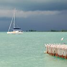 Stormy Day by Leon Heyns