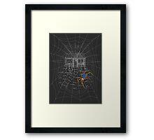 Spider Comfort Framed Print