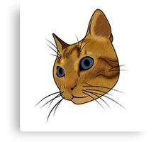 Cat (Hubert) Canvas Print