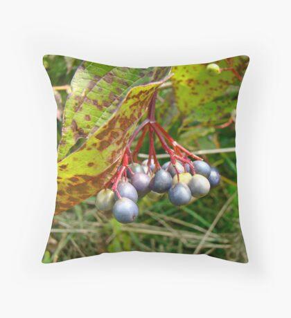 Berry Pretty Throw Pillow