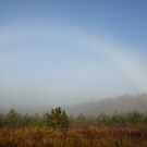 Strange Rainbow in this foggy morning today by Antanas