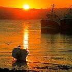 An October Sunset by Martina Fagan