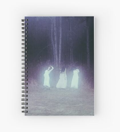 Sisters Of Birch Spiral Notebook