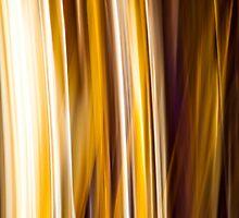 Live Fire Stripes by Alexandr Gnezdilov
