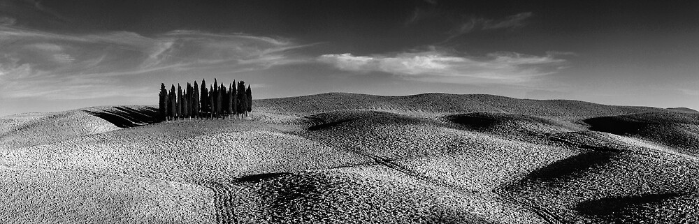 Val D'orcia, Tuscany  by Tim Edmonds