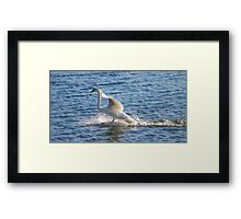 I have my own built in water skis. HA! Framed Print