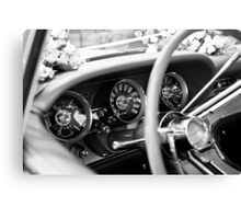 Back Seat Driver Canvas Print
