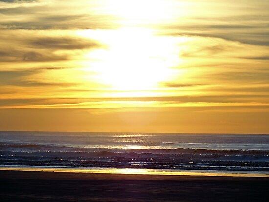 Quinault Beach Sunset  by Robert Meyers-Lussier