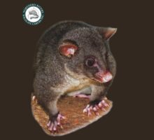 Mountain Brushtail Possum      Helen Armstrong T-Shirt