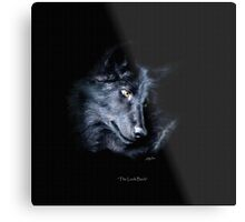 """""""The Look Back"""" Timber Wolf Portrait Metal Print"""
