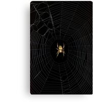 Spider Open for Business Canvas Print
