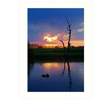 Twilight,Campaspe River,Elmore Victoria Art Print