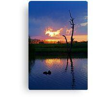 Twilight,Campaspe River,Elmore Victoria Canvas Print