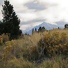eagle cap landscape 2 by Bruce  Dickson