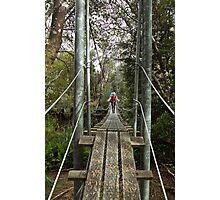 Returing across the rope bridge from Frenchmans Cap, Tasmania Photographic Print