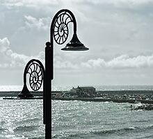 Harbour Overlook - Lyme Regis by Susie Peek
