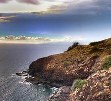 Side of the Road, Maui by CJ Fuchs
