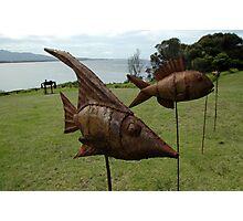 Sculptures on Edge-Fish on sticks,Australia 2015 Photographic Print