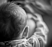 Bonding by Paul Louis Villani