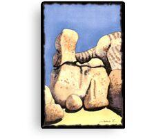c9-Boulder Shapes Canvas Print
