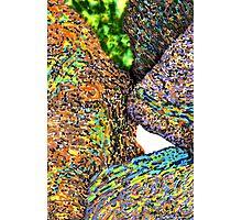 c7-Bright Boulders Upclose Photographic Print