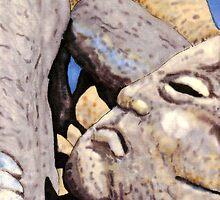 c3-A Grumpy Boulder by James Lewis Hamilton