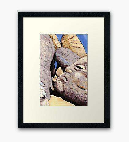 c3-A Grumpy Boulder Framed Print