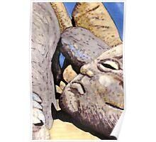 c3-A Grumpy Boulder Poster