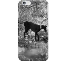 BW Gemma Reflections iPhone Case/Skin