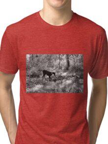 BW Gemma Reflections Tri-blend T-Shirt