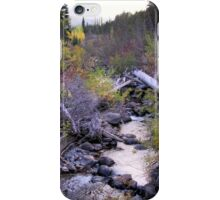 roadside attraction 2 iPhone Case/Skin