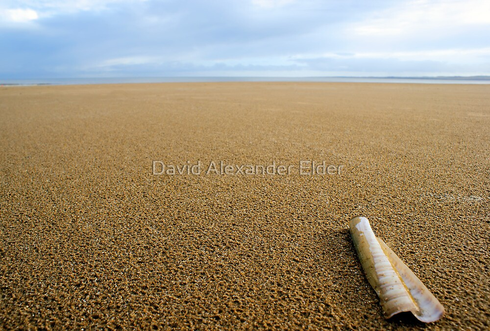 Big Beach by David Alexander Elder